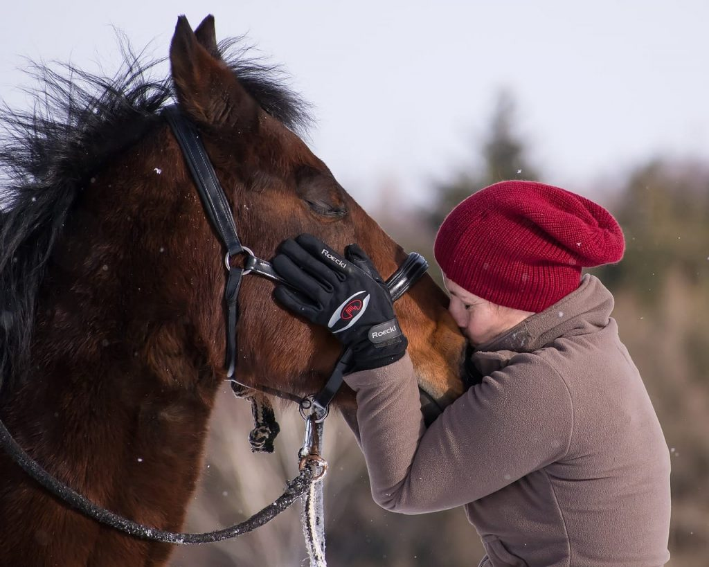 Horse love, Cheshire Equestrian Center