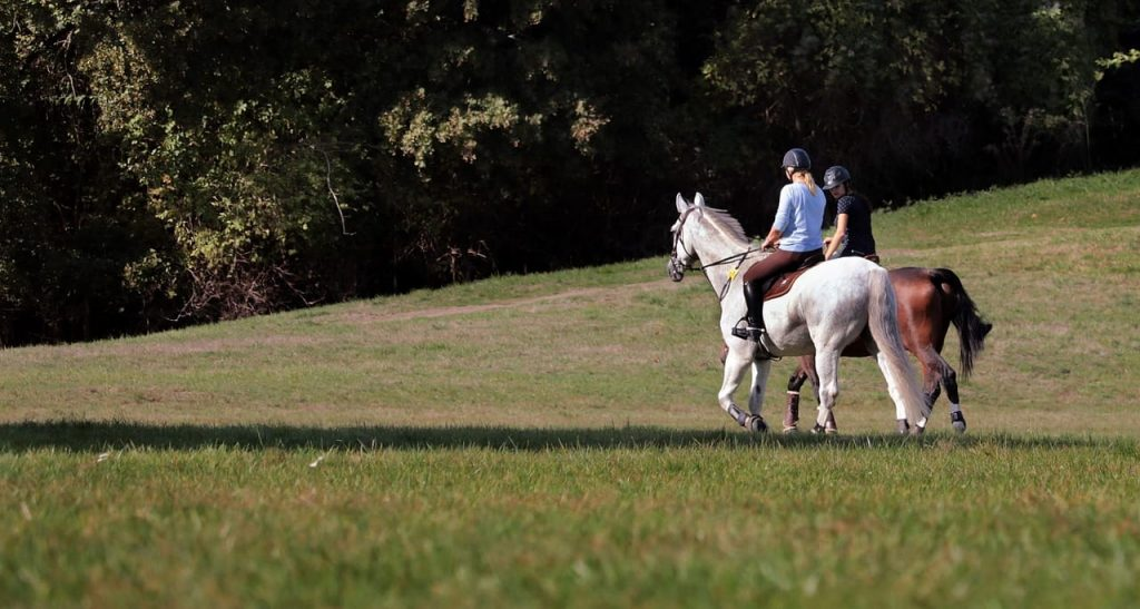 two trail riders, trail riding tack and gear available at Cheshire Equestrian Center