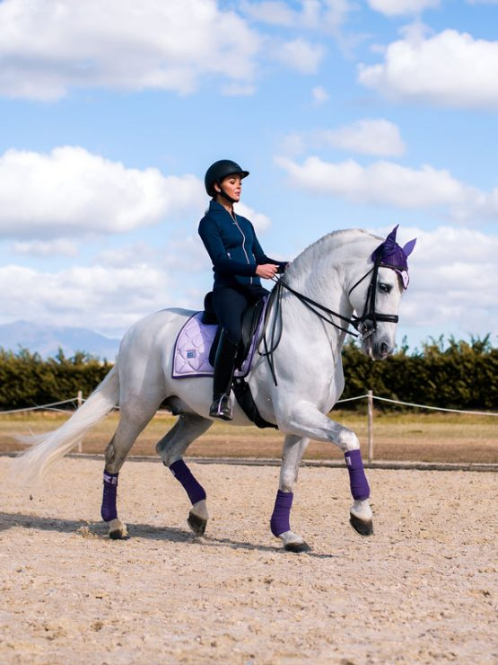New Lavender dressage pad in stock!